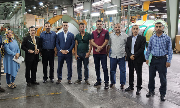 Visit by Iraqi Kurdistan Ministry of Electricity specialists